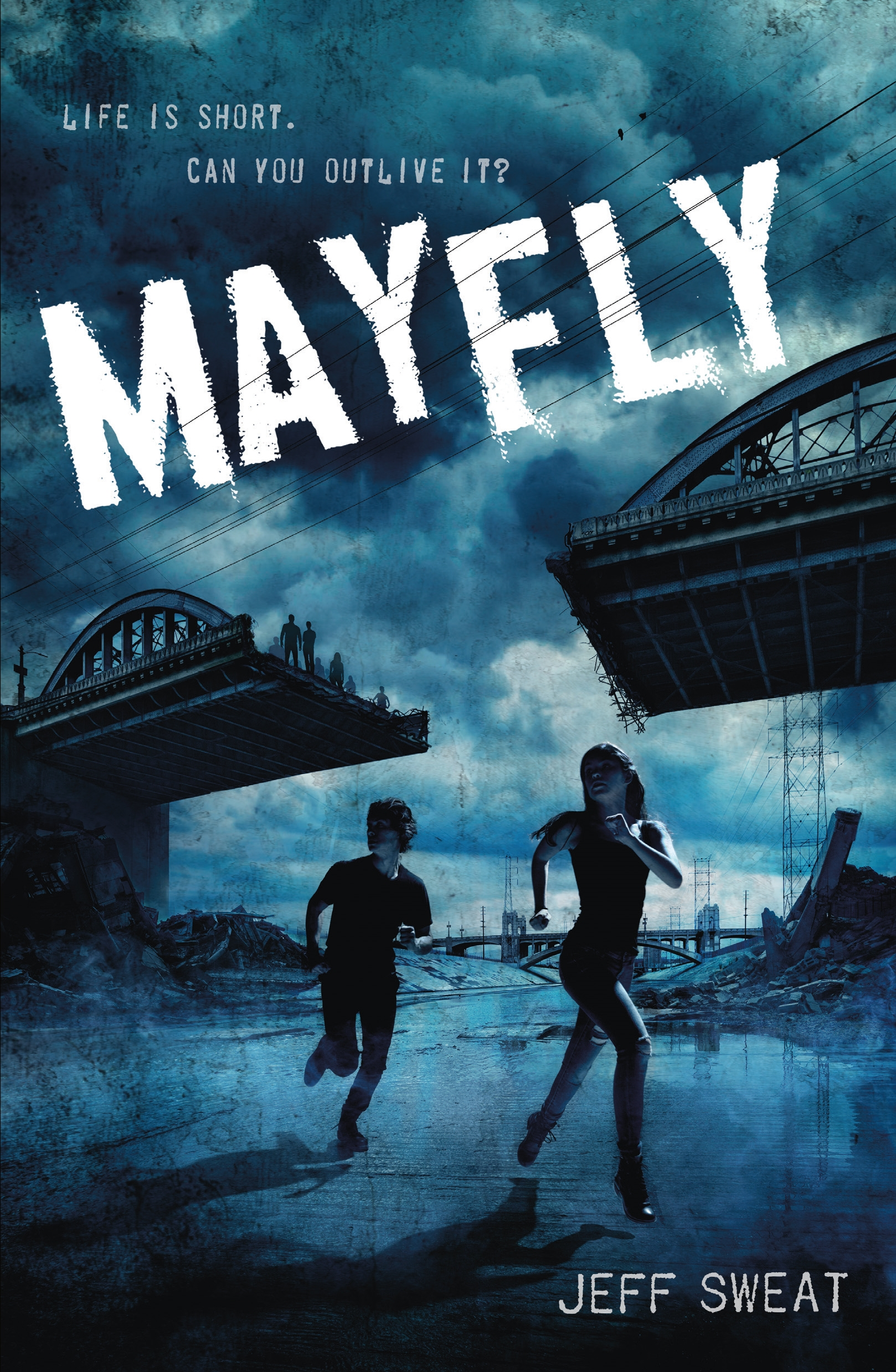 MayFly Book Cover