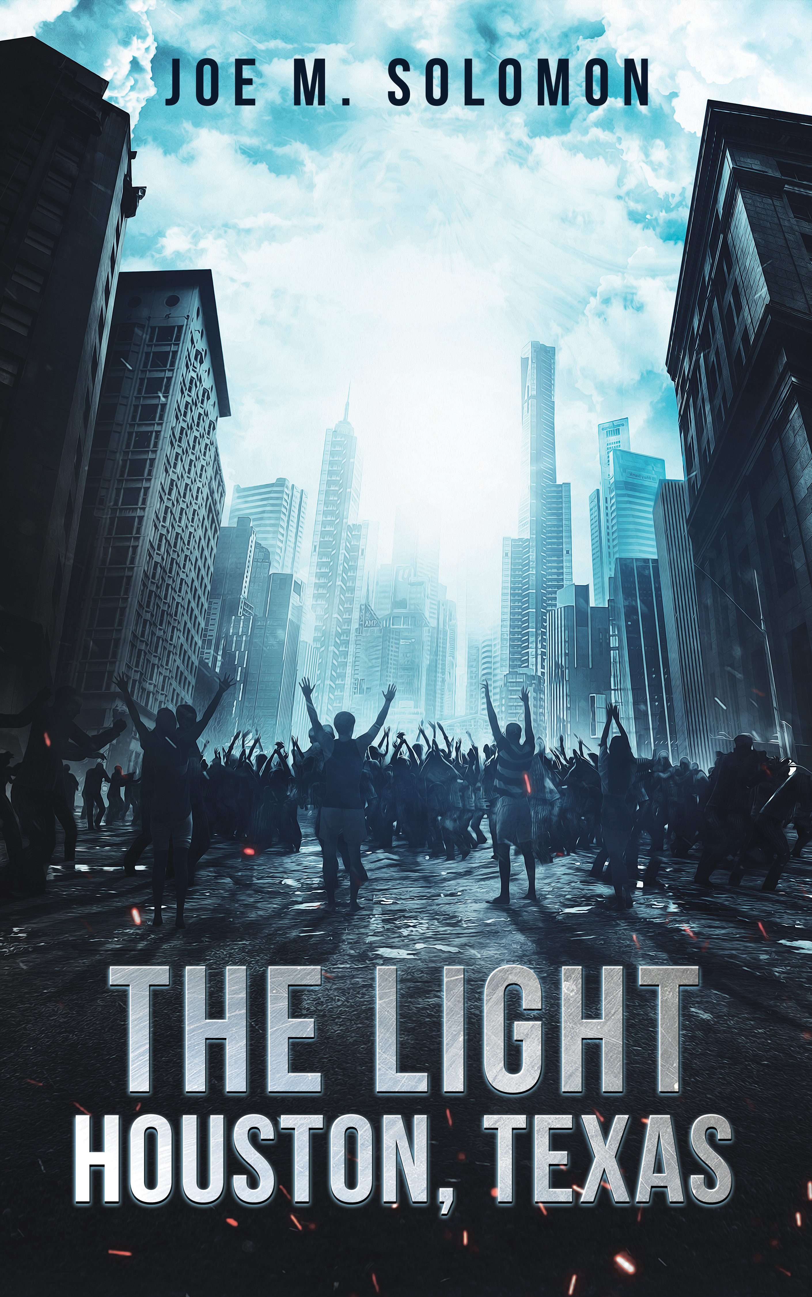 THE LIGHT: HOUSTON TEXAS Book Cover